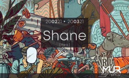 NOUVEAU LE MUR NANCY – [Shane] - Saint-Sebastien Nancy