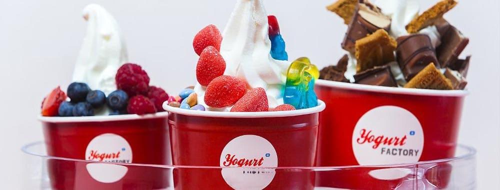 yogurt-factory-nancy